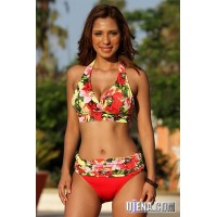Canary Islands Floral Halter Top and Minimizer Bottom Bikini