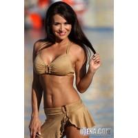 Faux Suede Vogue Skirted Bikini