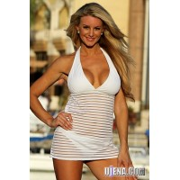 Sheer White Stripes Swim Dress